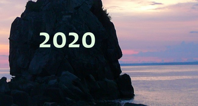 Metaphorosis 2020: The Complete Stories